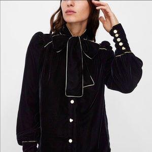 Zara Collection Black Gold Velvet Tie Neck Top